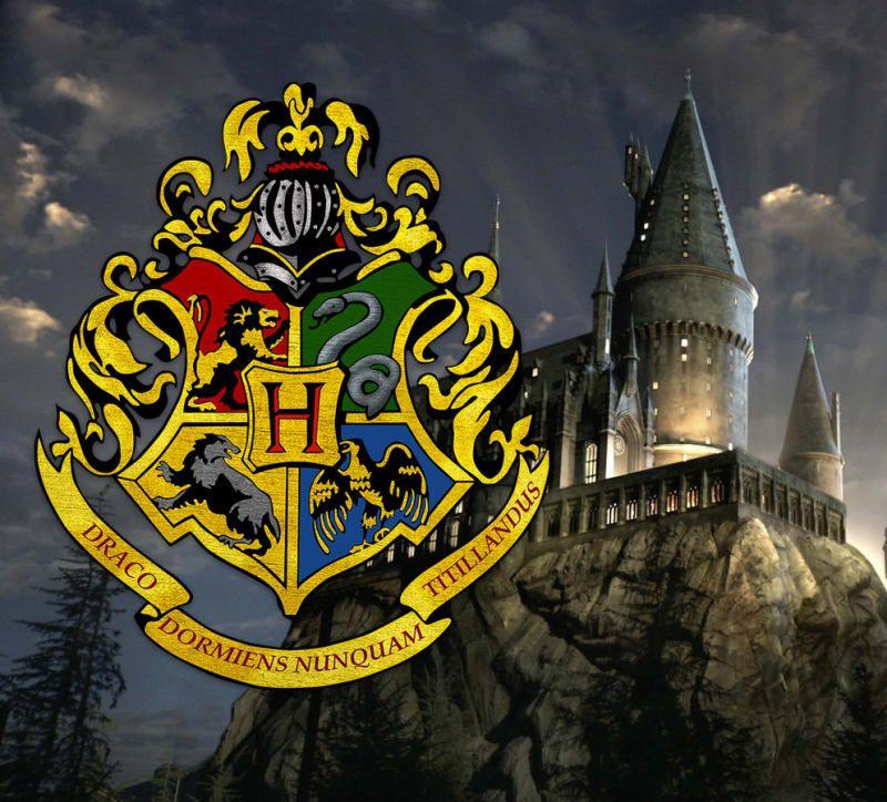 гарри поттер школы магии названия