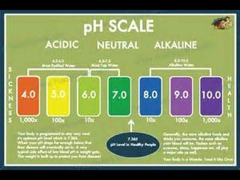 Why Ph Levels Are Important For Growing Cannabis  Youtube  Ph Ec
