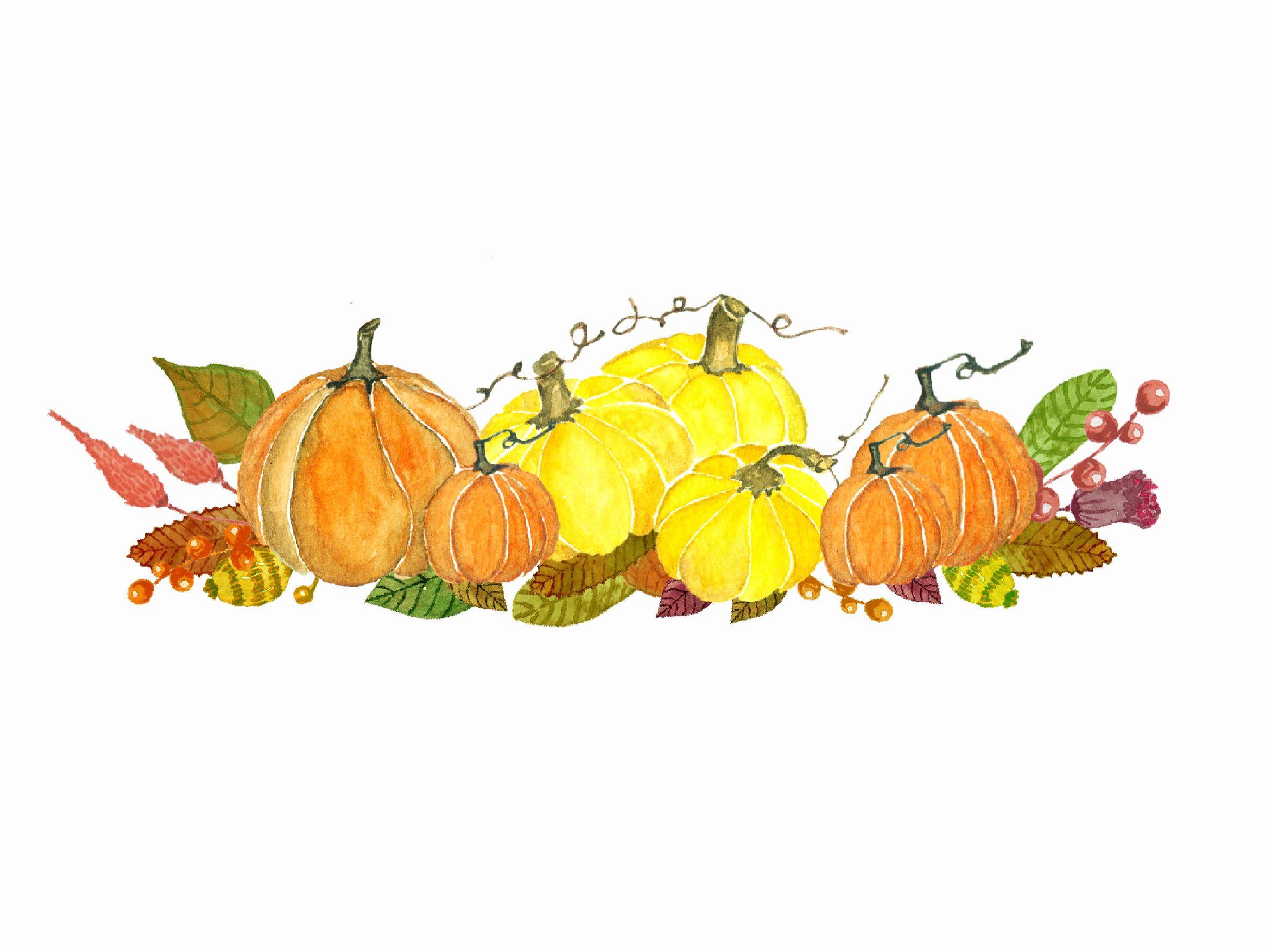 Watercolor Autumn Pumkin Clipart Illustrations 1