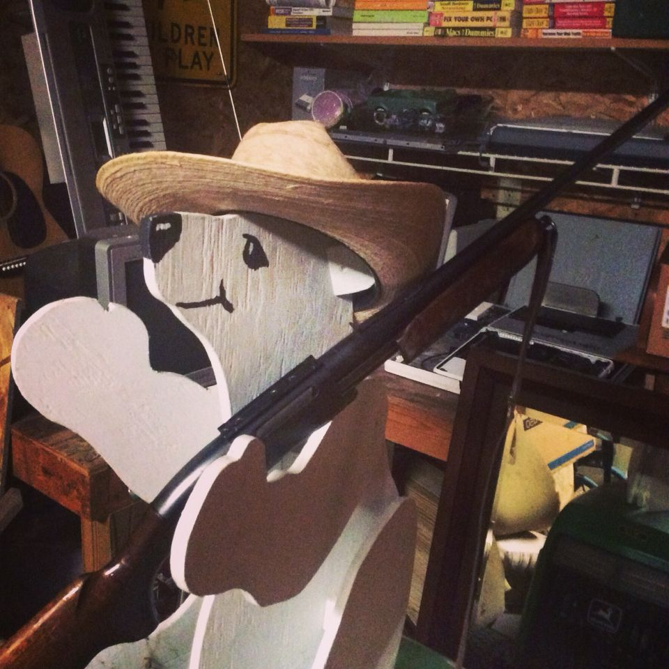 LANpanda In His Someone Who Really Likes Country Music Halloween Costume
