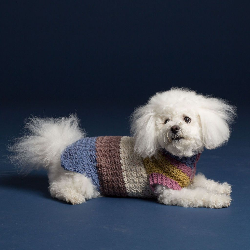 Caron® Cakes™ Textured Crochet Dog Coat in Turkish Delight | DASH ...