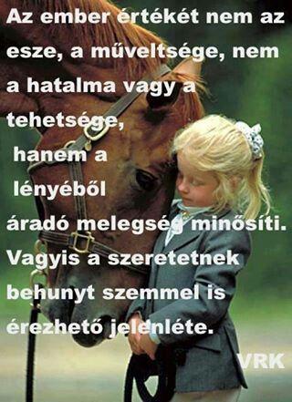 gyönyörű lovas idézetek lovas idézetek🐎❤❤ | Funny quotes, Life quotes, Horse quotes