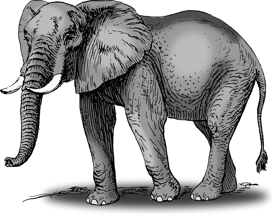 Large Size Colored Elephant Clipart Vector Elephant Clip Art Elephant African Bush Elephant