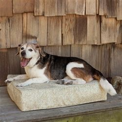 Outlast Dog Bed Sleep System 5 Inch Thick Show Dog Collection