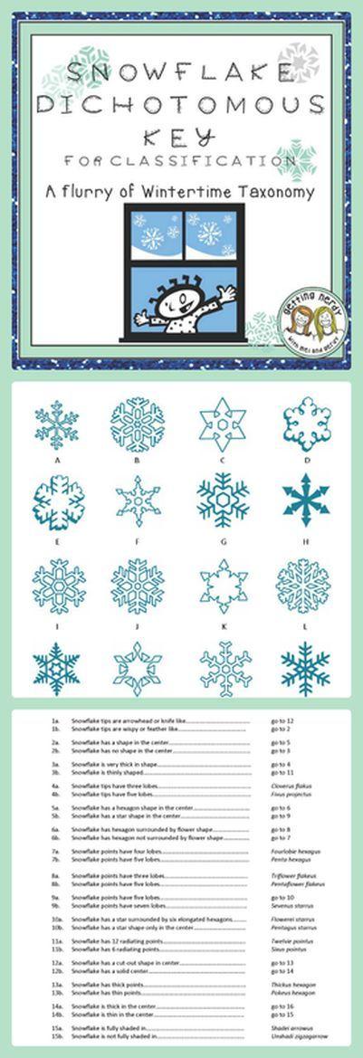 Christmas Science A Winter Snowflake Dichotomous Key Holiday