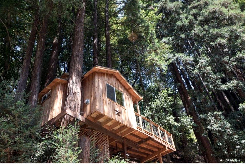 Tree House Rental For Couples Near Santa Cruz For Romantic Getaway To California S Redwoods Luxury Tree Houses Tree House House Rental