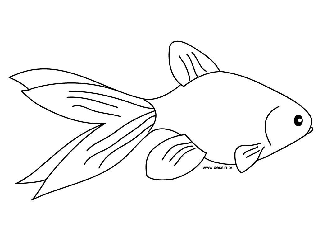 Goldfish Coloring Page Line Art Drawing B W Image Coloring Pages For Kids Coloring Pages Fish Coloring Page