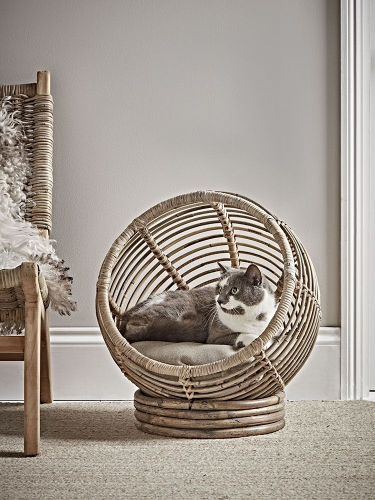 9 Rattan And Woven Pieces You Need In Your Home This Spring Swoon Worthy Dog Bed Luxury Animal Room Cat Bed