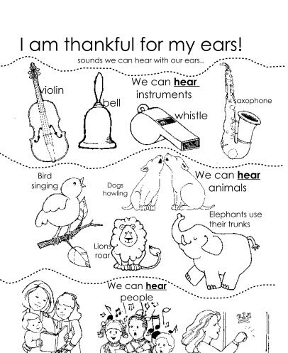 I Am Thankful For My Ears Sunbeam Lessons Primary Lessons Body