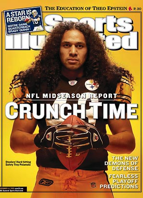 Troy Polamalu and my grandson..ZANE look alike..lol