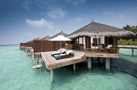 I want to dive in the Maldives for my 40th and I want to stay in a water bungalow.   I think tripadvisor may become my new best friend.