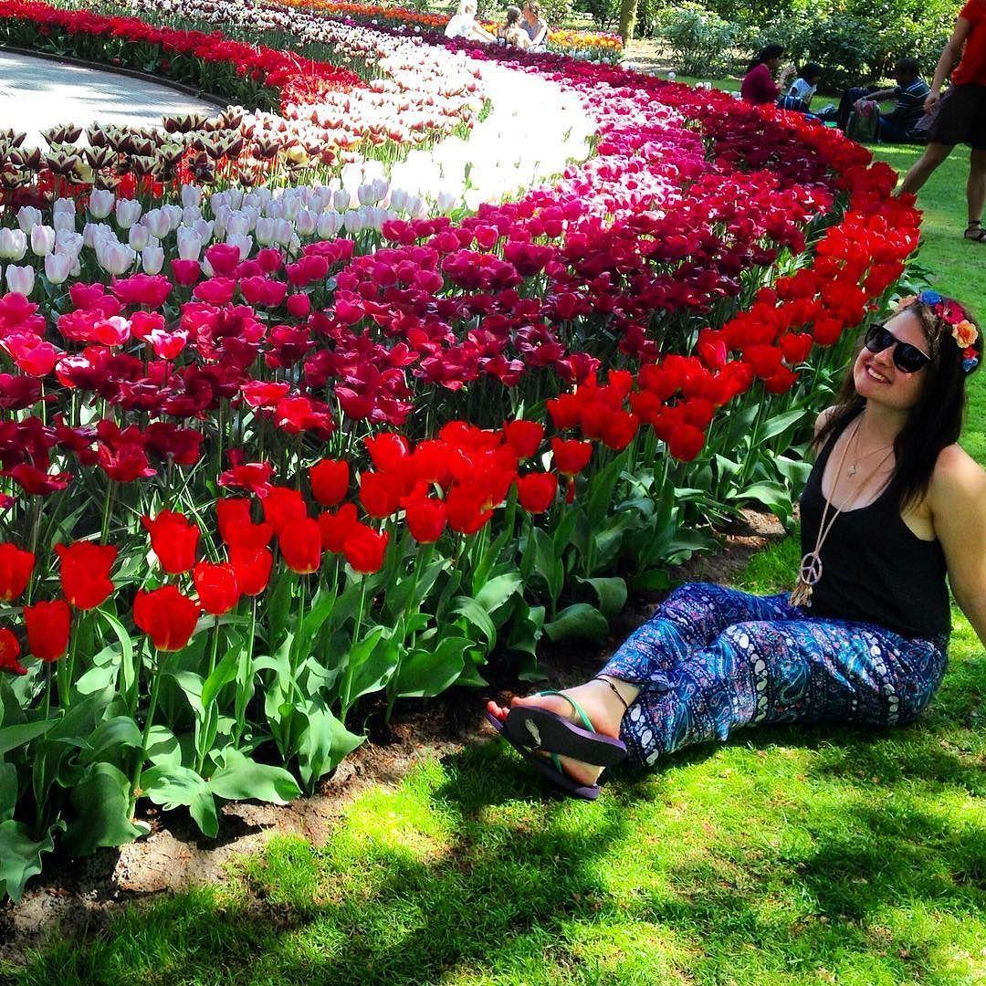 Não quero ir embora desse lugar  #tulipas #querotodas #keukenhof #holland by isachakur