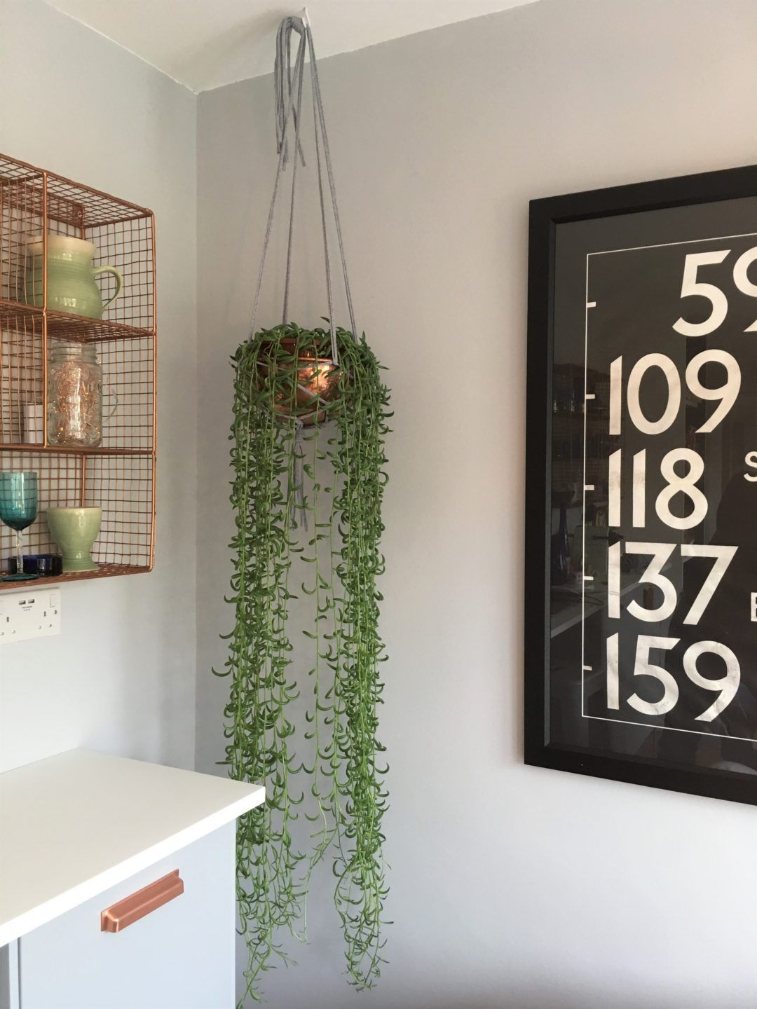 Step by step guide on how to make a simple easy plant hanger for a