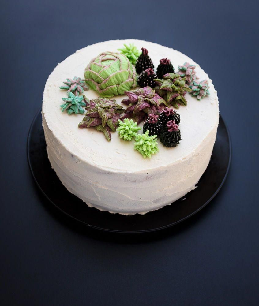Vegan Succulent Cakes are a fun and trending way to decorate any cake. it's a perfect birthday cake
