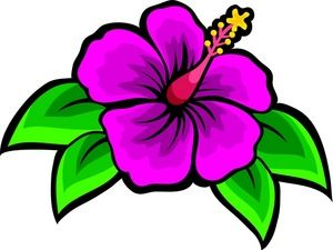 Hibiscus Clipart Image: Clip Art Illustration Of A Purple Hibiscus ...