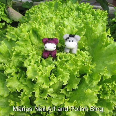 The Moo Moos are very helpful when I pick lettuce for dinner.