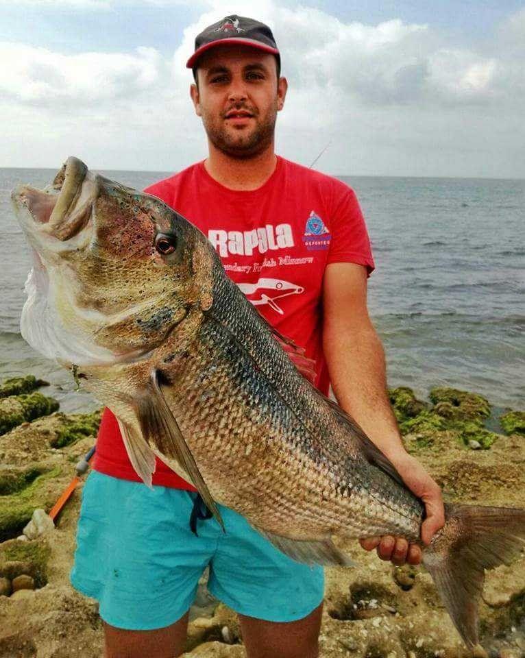 Great dentex from @migue_amor_perea   #fishing #fishinglife #fish #angler #pesca #sea #monsterfish #CatchandRelease #bass #seabass #wefish