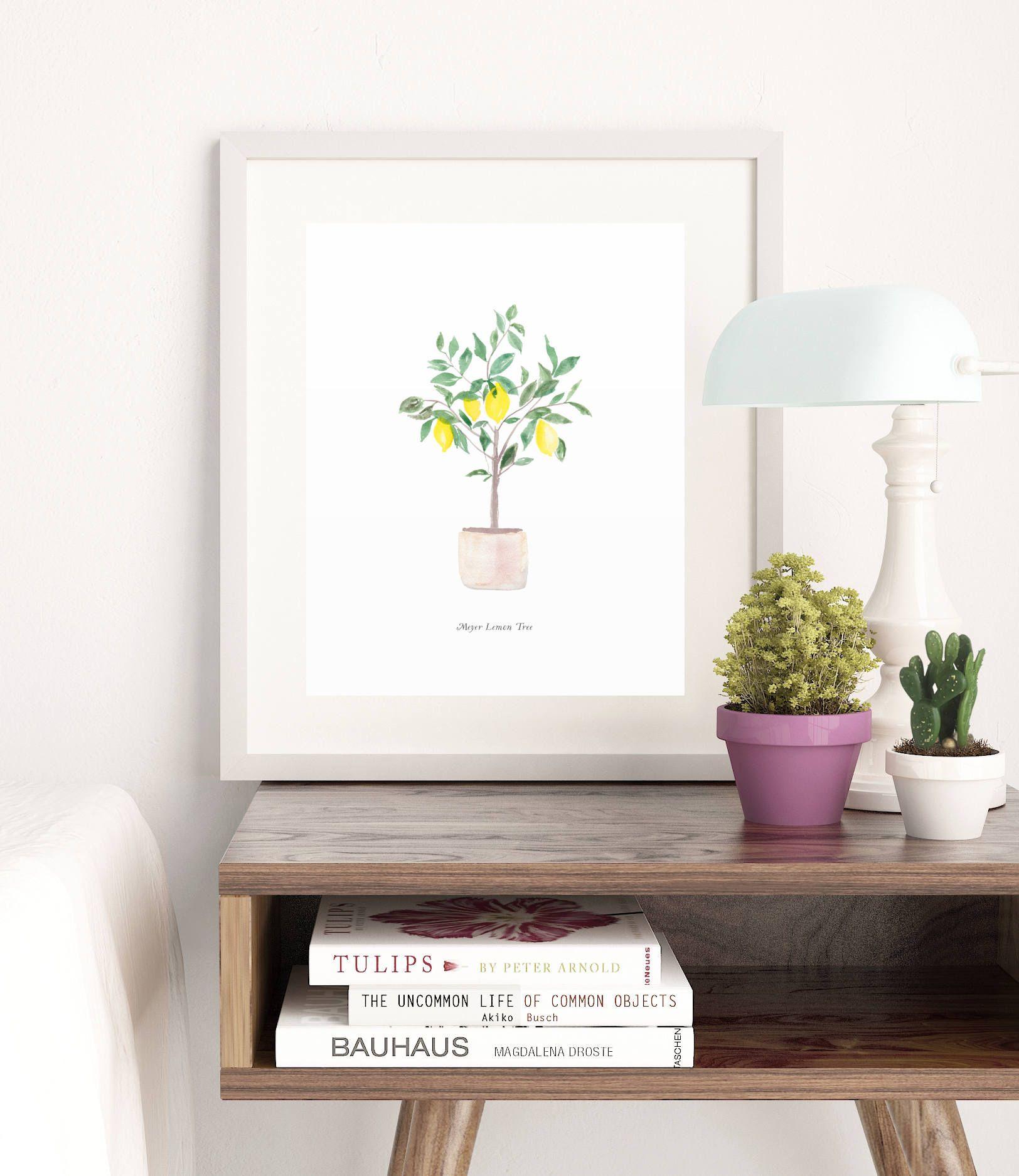 Meyer lemon tree watercolor art print x home decor wall artwork