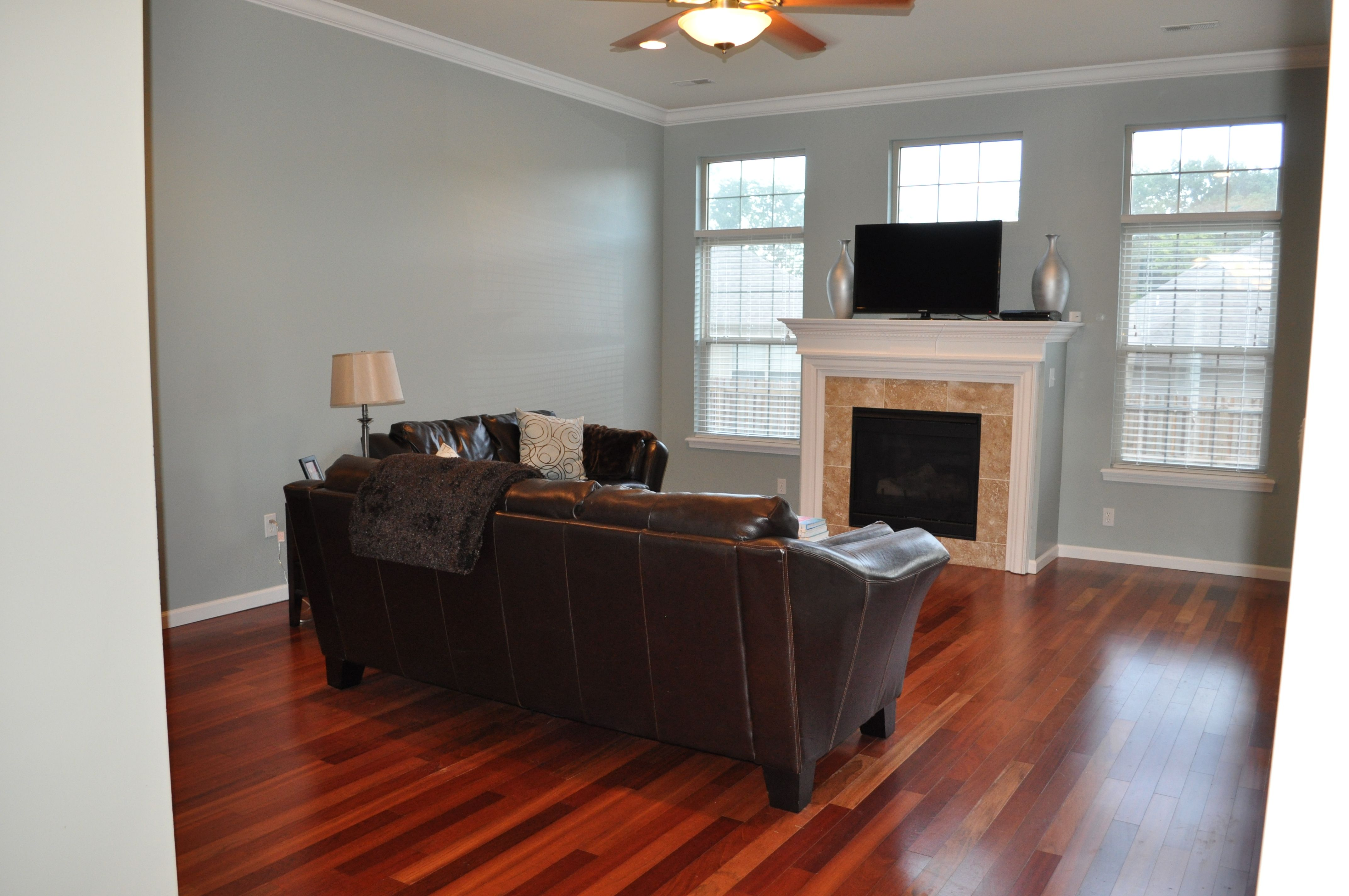 Our living room paint color sherwin williams silvermist living room pinterest living room for Sherwin williams paint ideas for living room