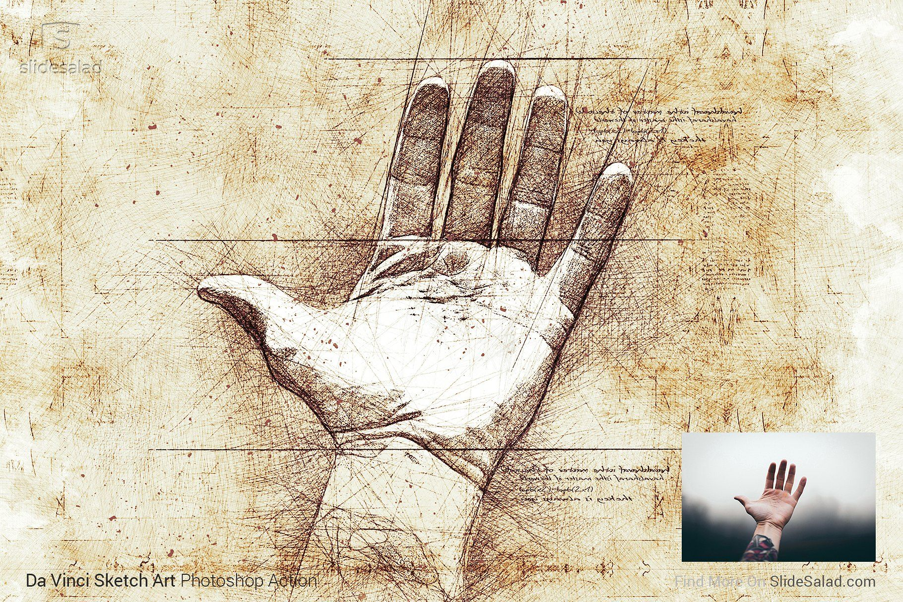 Da Vinci Sketch Art Photoshop Action Da Vinci Sketches