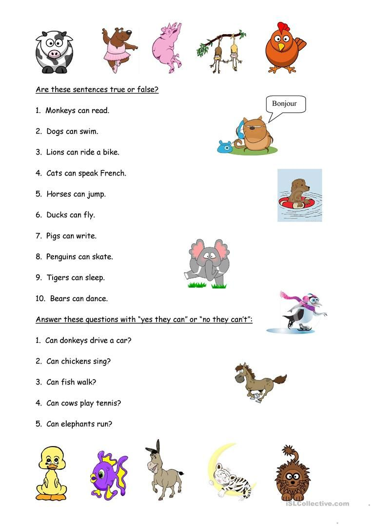 Animals And Abilities English Esl Worksheets For Distance Learning And Physical Classrooms How To Speak French Kids Study True Or False Questions [ 1079 x 763 Pixel ]