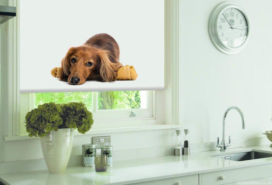 Give a Dog a Bone Roller Blinds #blinds #dog #animals #cute
