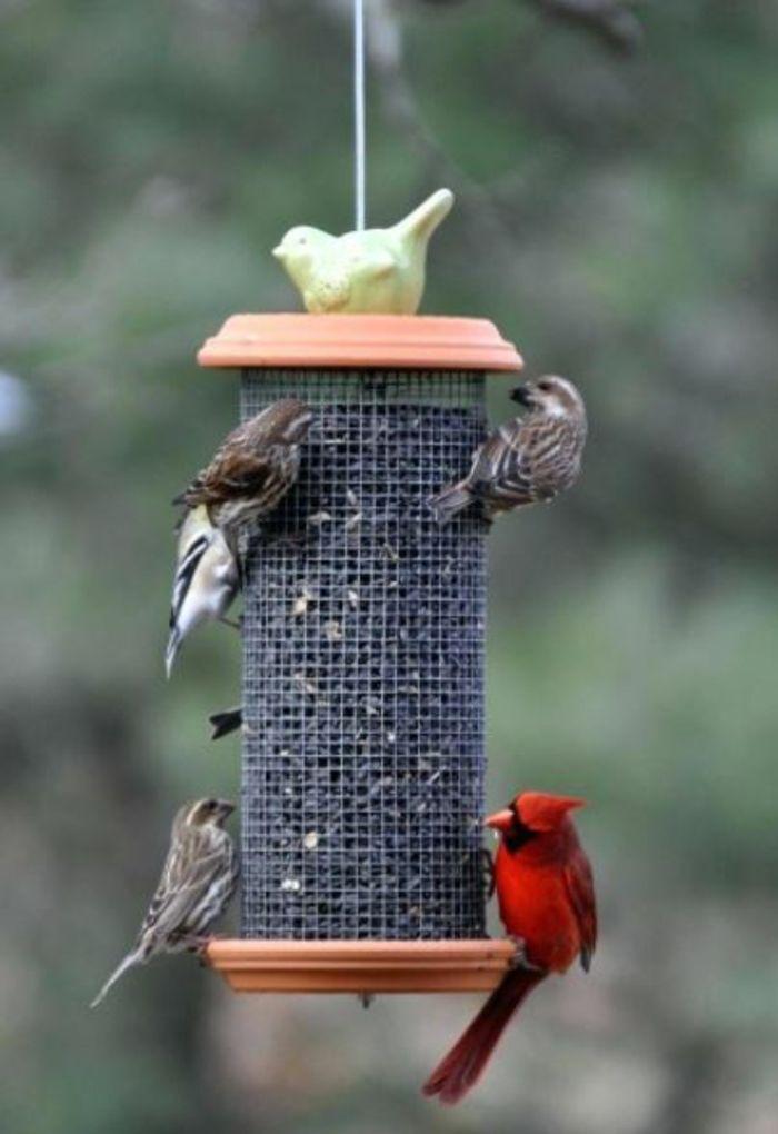 Vogelfutterhaus Selber Bauen Und Was Dabei Zu Beachten Ist