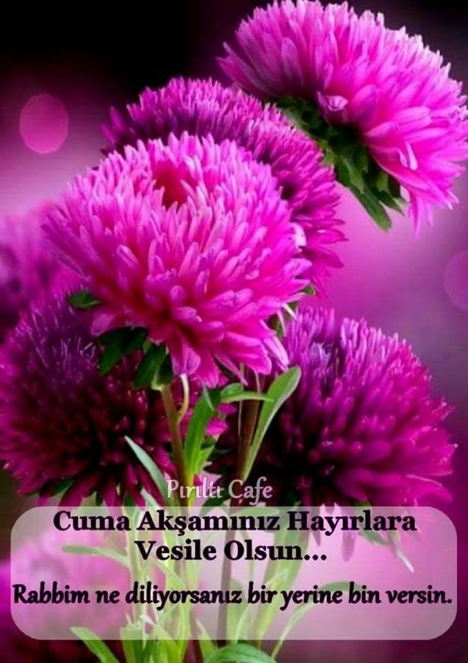 Cuma Gecesi Mesajları Duaları Ve Resimleri çiçekler Flowers