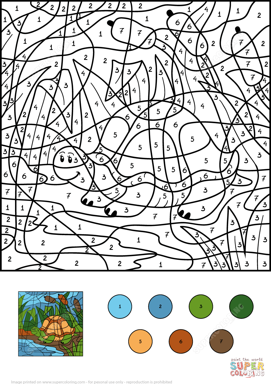 Turtle in Pond Color by Number Super Coloring Coloring