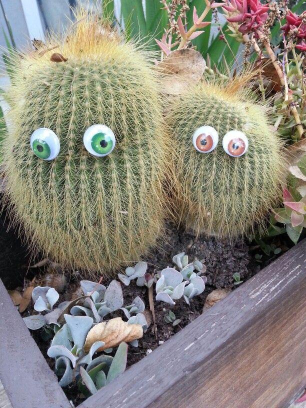 My happy cactus couple.