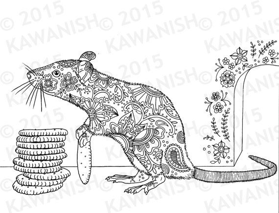 rats coloring pages cracker stacker rat adult coloring page gift wall art floral  rats coloring pages
