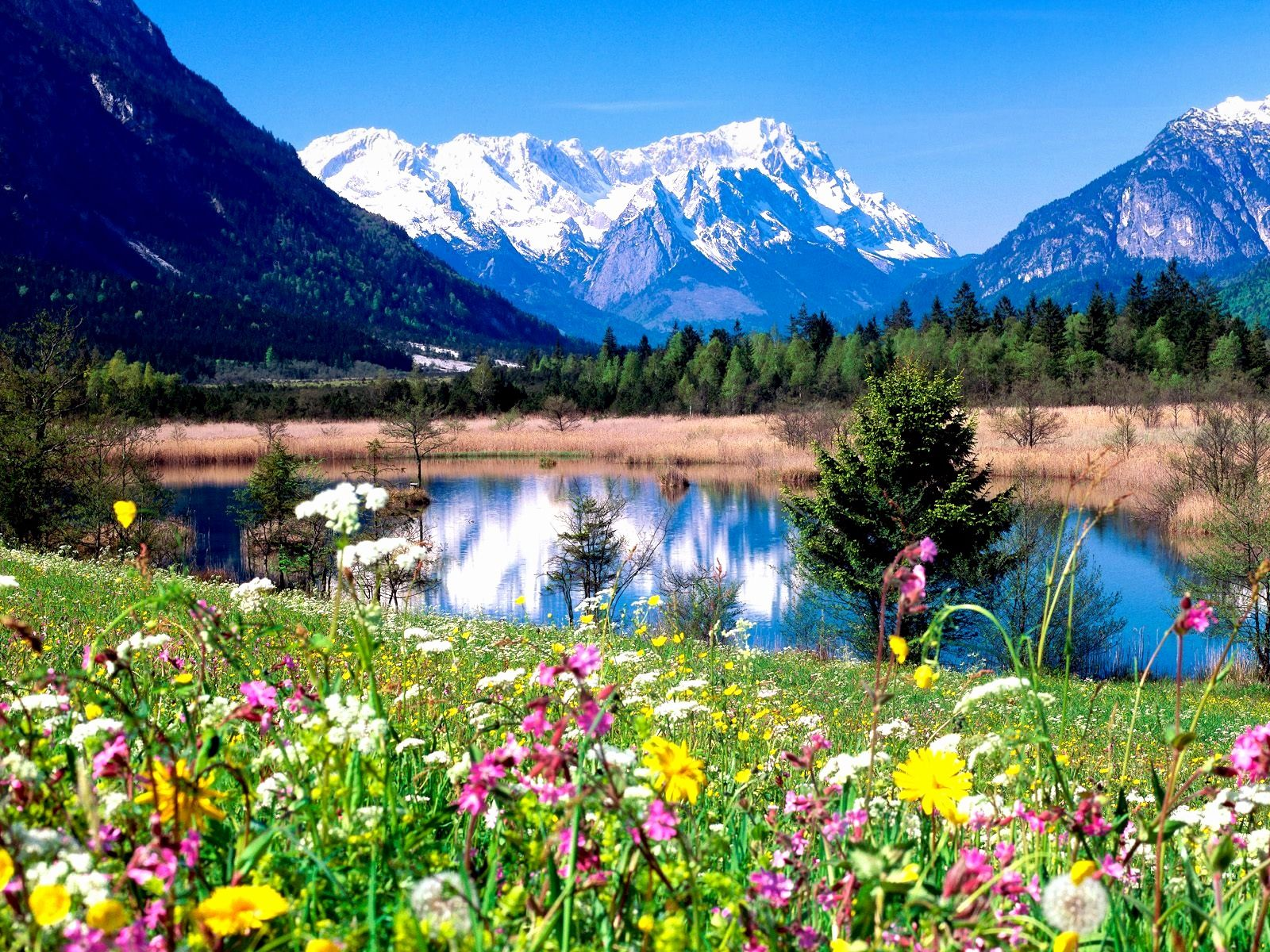 Spring Landscape Wallpaper High Quality Resolution Eqs Beautiful Landscapes Beautiful Nature Beautiful Places