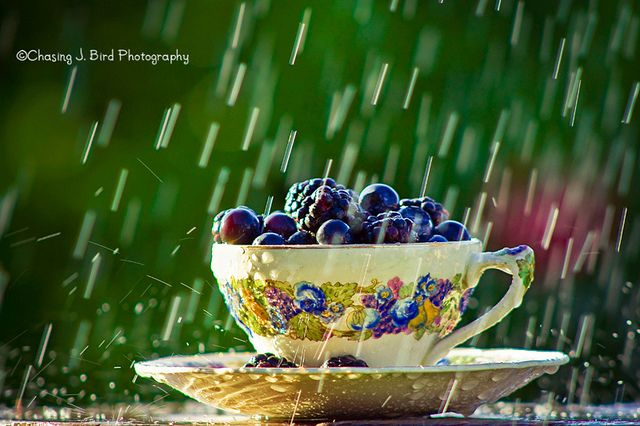 Teacup of blueberries in the rain