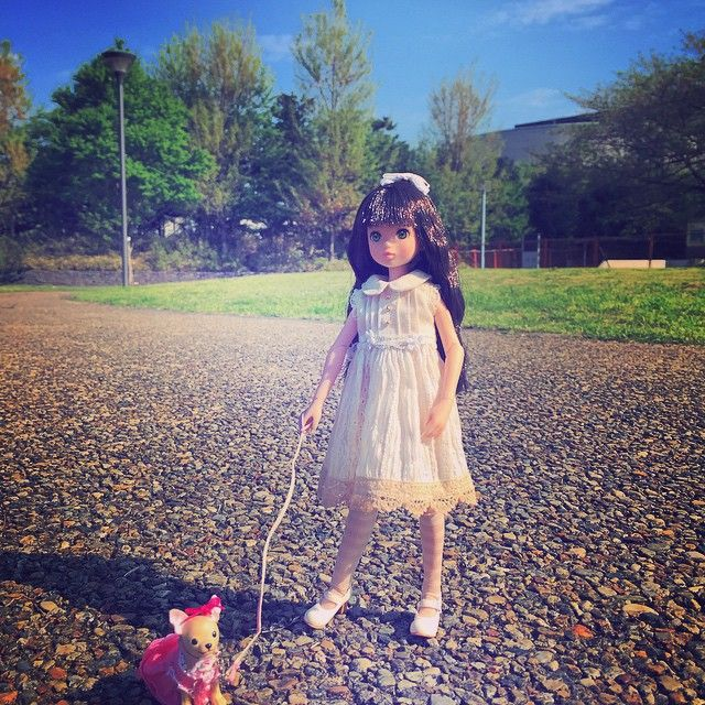 Are you done yet? #ruruko #doll #dog #pet #morning #walk