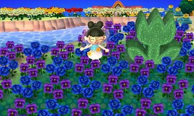 The Acnl Help Depo