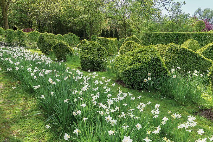 Pierwsze Wiosenne Kwaity W Ogrodzie Weranda Pl Bulb Flowers Outdoor Garden