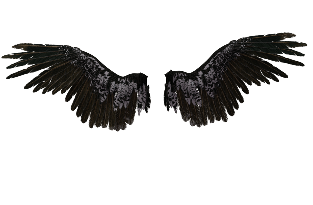 Tattoo Png Aesthetic Hd: Angel Wing 06 By Wolverine041269 On DeviantArt
