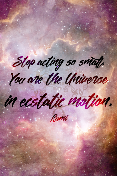 Stop Acting So Small You Are The Universe In Ecstatic Motion Rumi