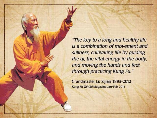 Why Kung Fu?
