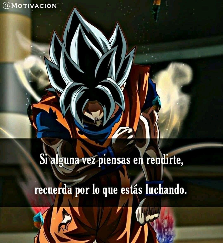 Pin De Fenix En Frases De Sentimientos Frases Goku Frases