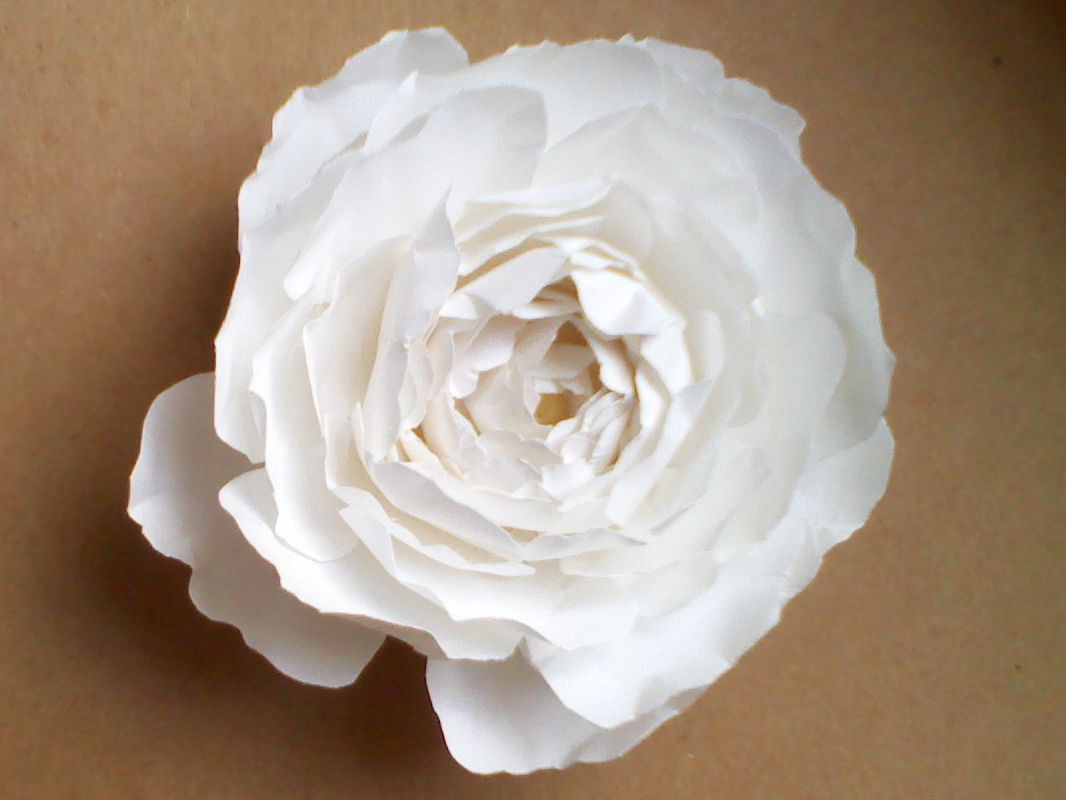 Easy Paper Flower Tutorial Cards Pinterest Paper Flower