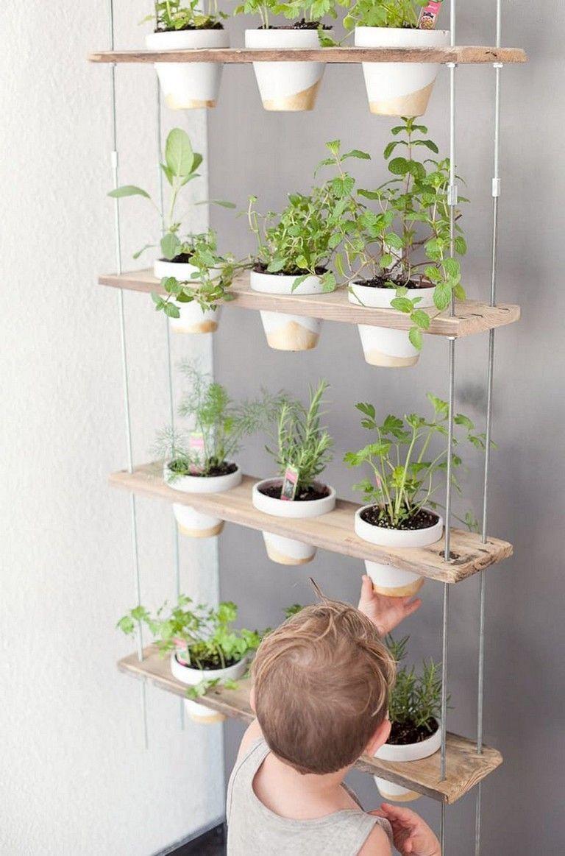 9+ Top Frische Ideen Wachsende Kräutergärten in Ihrer Küche zu ...