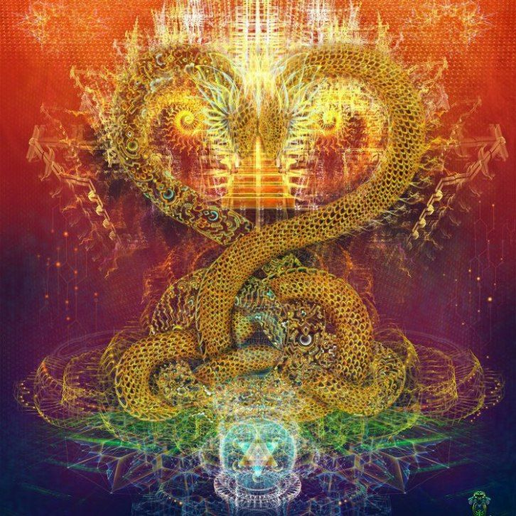 kundalini-snakes.jpg (726×726)