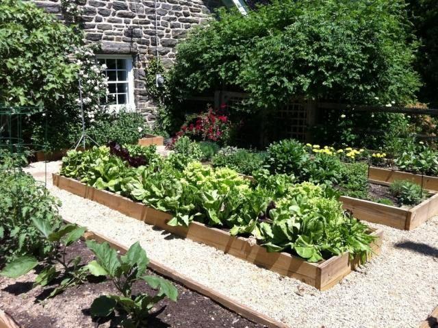 gemüsegarten im herbst traditionell aussehen kasten holz grün, Garten ideen