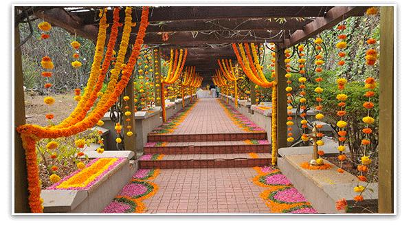 Marigold The Perfect Indian Wedding Flower Indian Weddings