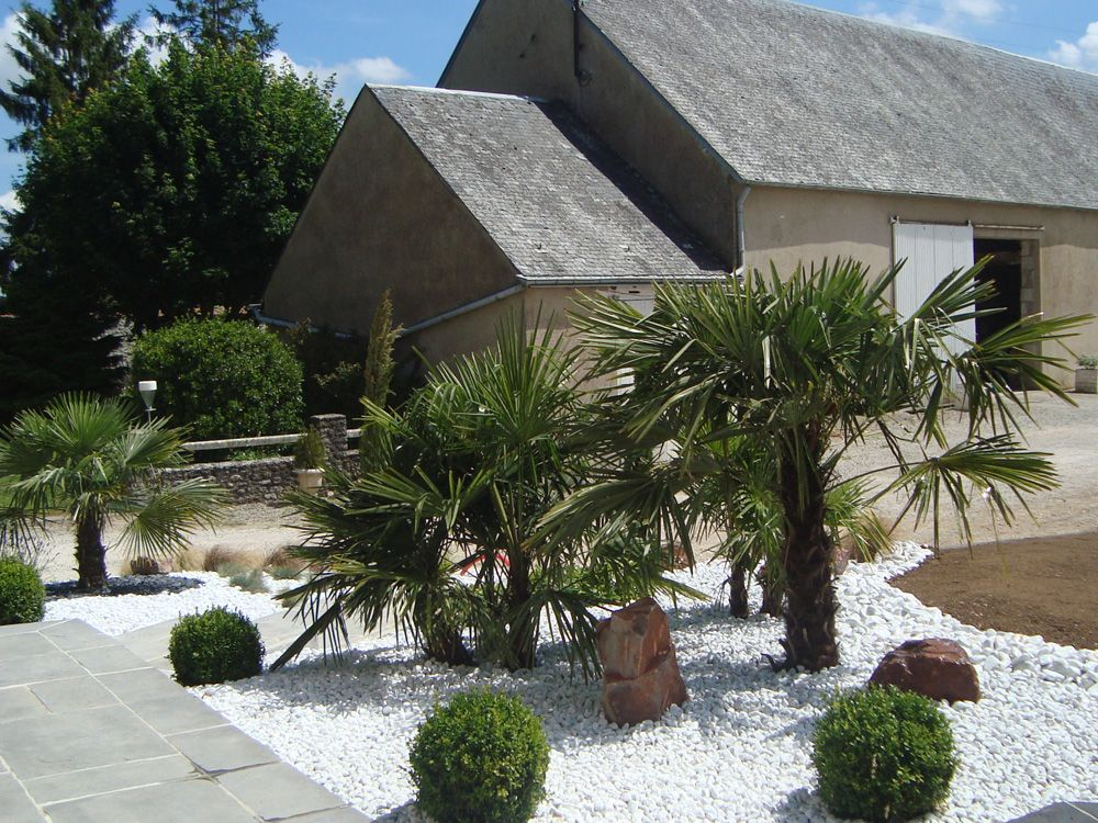 Plantation de palmiers d 39 arbustes graminees sur for Decoration jardin galets blancs
