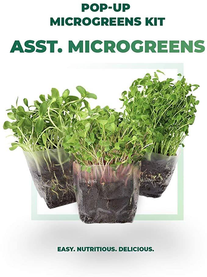 Window Garden Assorted Indoor Microgreens Seed Starter Vegan Growing Kit – Includes Seeds, 3qts Organic Fiber Potting Soil and Pop-Up Bag – Add Water and Grow Vegetables for Healthy Salads