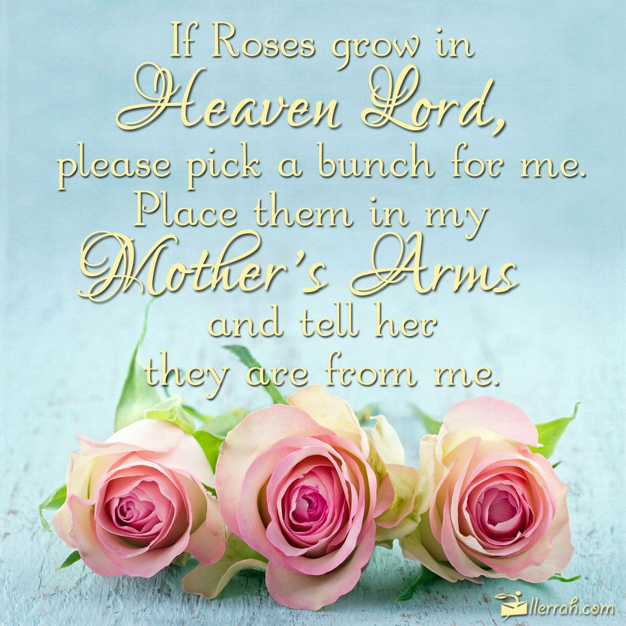 Roses In Heaven Mom In Heaven Birthday In Heaven Mom Mother S