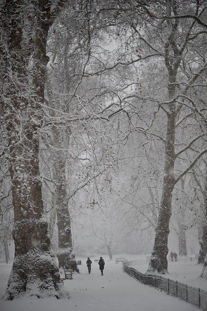 Favorite Photoz: St James Park in the snow, London