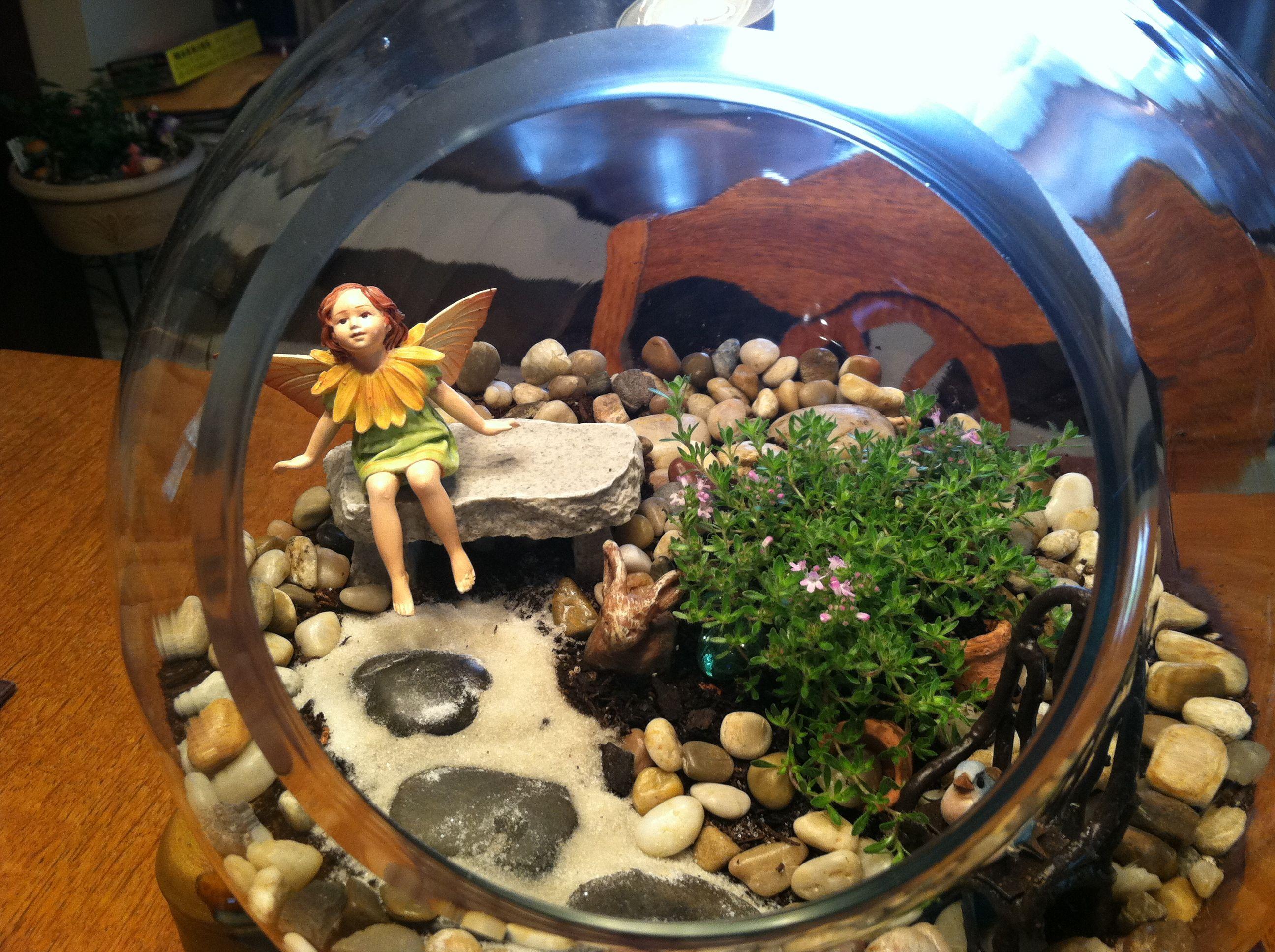 my fairy garden terrarium elfenhaus pinterest. Black Bedroom Furniture Sets. Home Design Ideas